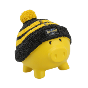Hurricanes Beanie Piggy Bank